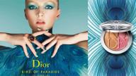 Birds of Paradise Dior