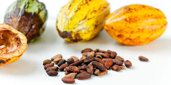 smagliature rimedi burro cacao